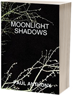 Moonlight Shadows by Paul Anthony